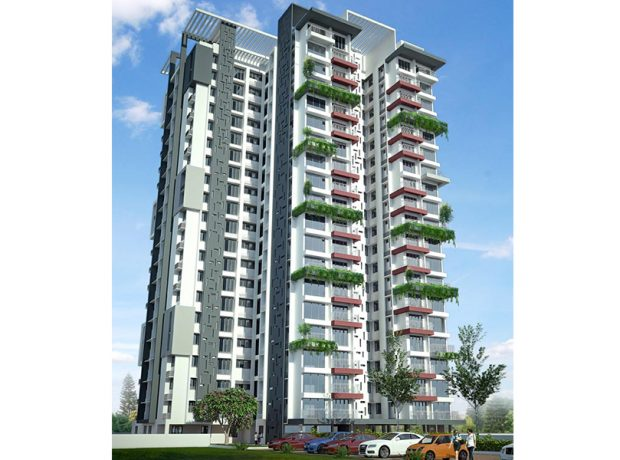 DD Twitter Valley